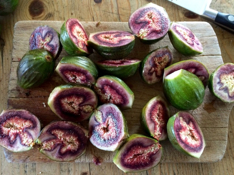 Figs | MyCraftyMusings