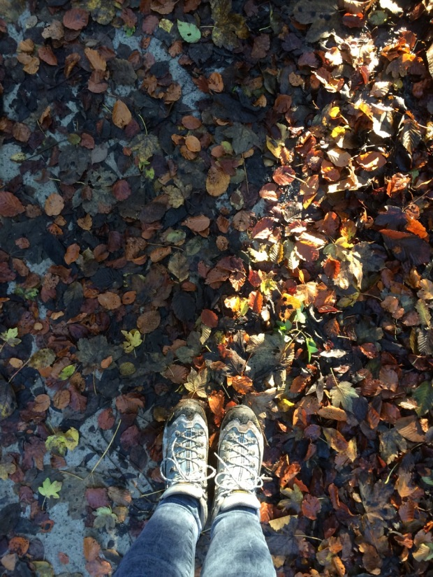 Autumn Leaves | MyCraftyMusings