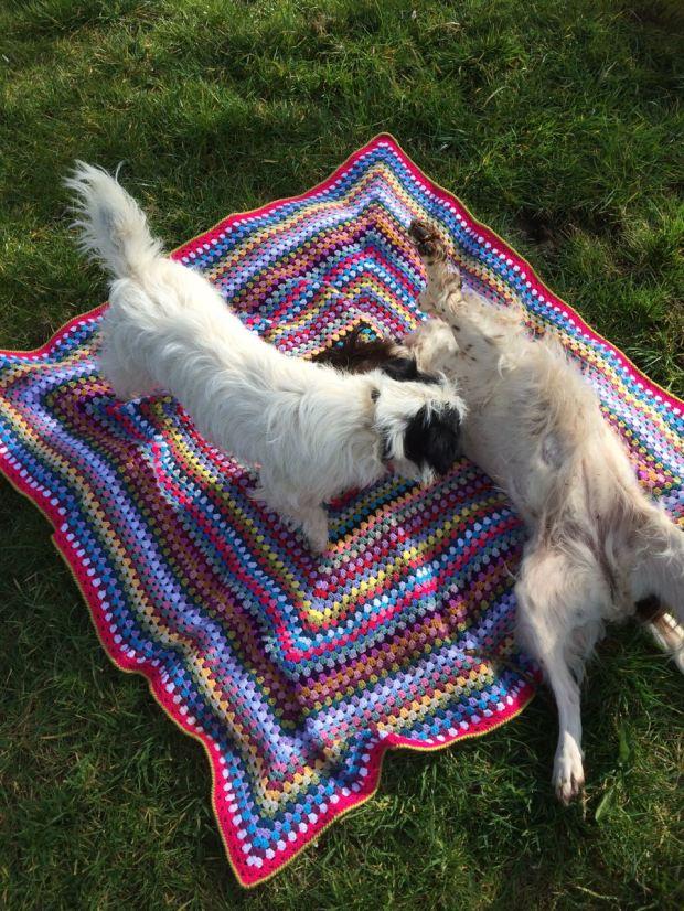 Granny Square Picnic Blanket | MyCraftyMusings